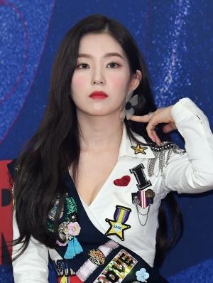 레드벨벳 콘서트 기자회견
