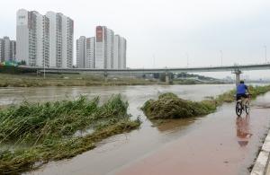 폭우로 인한 중랑천 범람