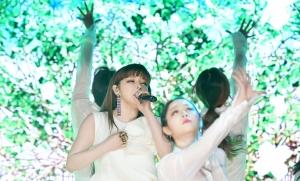 '컴백' 가수 박봄