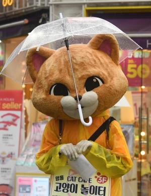 '우산은 거들 뿐'...비오는 거리 홍보하는 인형탈 알바생