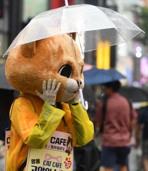 '우산은 거들 뿐'... 비오는 거리 홍보하는 인형탈 알바생