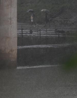 위험한 한강 산책