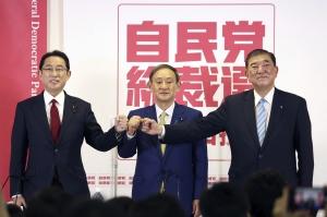 Japan Politics