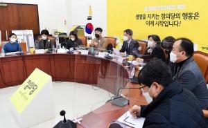 아동학대와 입양 정책 논의하는 정의당