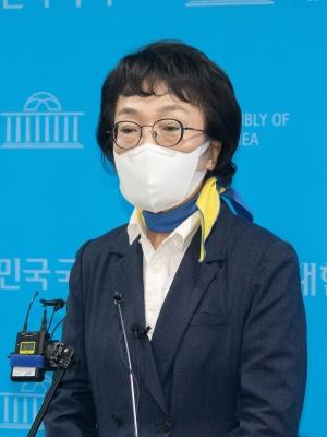 김진애 기자회견